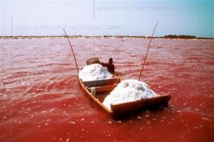 Australia - Różowe Jeziora