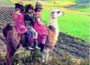 Ekwador - Ekwador ciekawostki