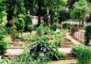 Padwa - Ogr�d botaniczny w Padwie
