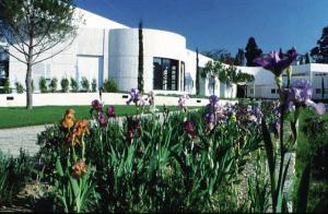 Nicea - Muzeum Archeologiczne w Nicei