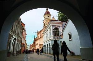 Litwa - Co warto zobaczy� na Litwie