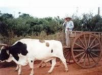 Paragwaj - Paragwaj ciekawostki