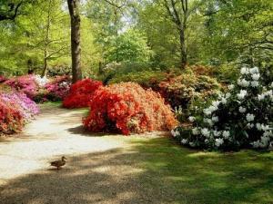Londyn - Parki i ogrody w Londynie