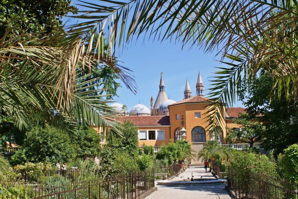 Ogród botaniczny w Padwie