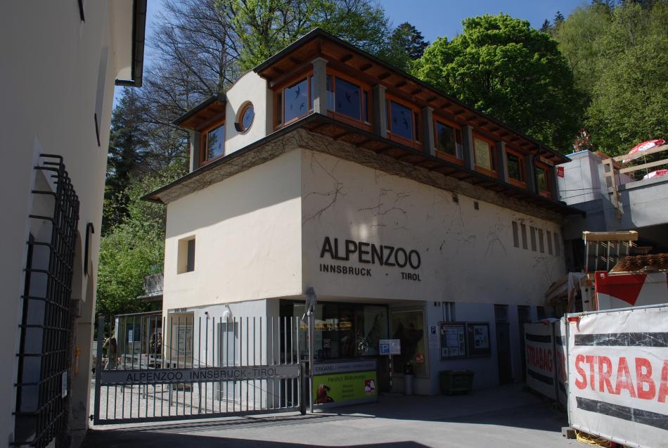 Alpenzoo w Innsbruck