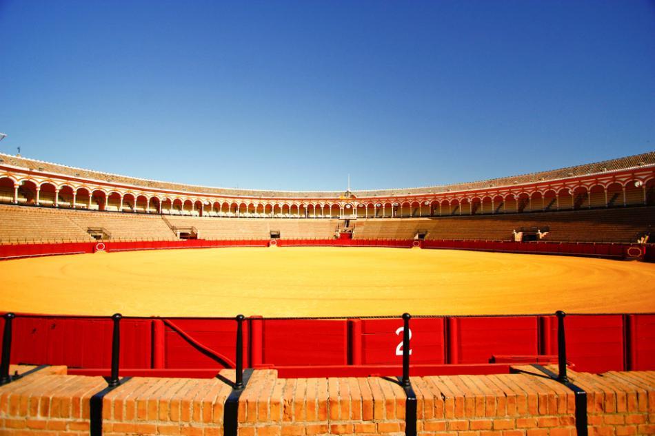Arena walk byków