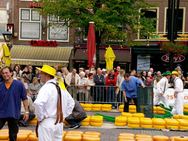 Alkmaar - Targ serowy